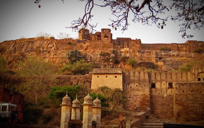 Indian Safari Fort