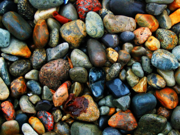 acadia_pebbles