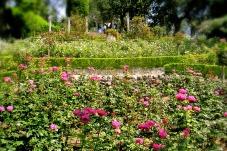 Ephrussi Garden