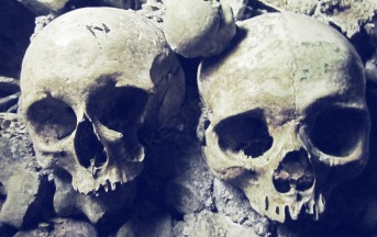 Paris catacomb skulls