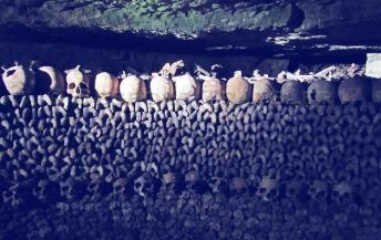 Paris catacomb wall
