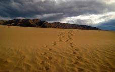 Death Valley footprints