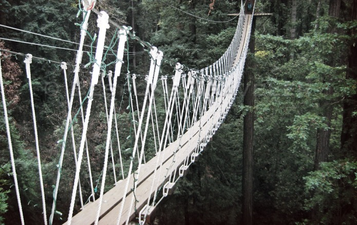 zipline-bridge