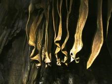 spelunking fins