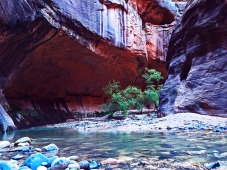 Zion-narrows