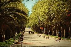 Barcelona_park