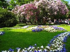 st-petersburg-garden