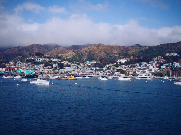 catalina-harbor