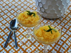 granita-orange-treat