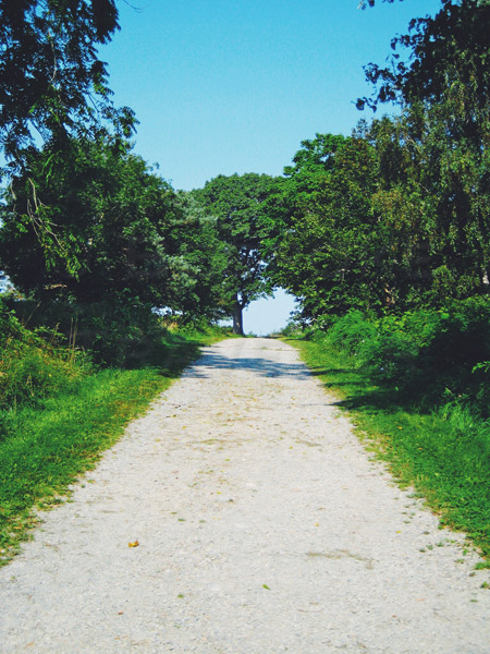 language-road