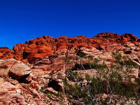 Red-Rock-cliff