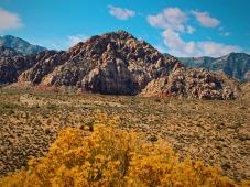 Red-Rock-scene