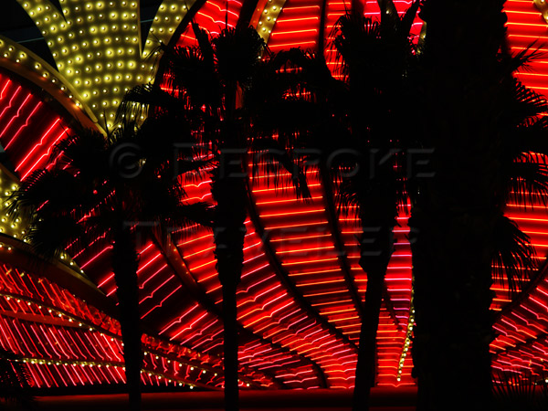 Vegas-palms