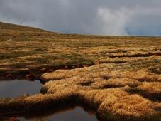 Mt-Evans-view