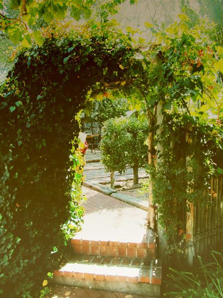 SantaFe-garden
