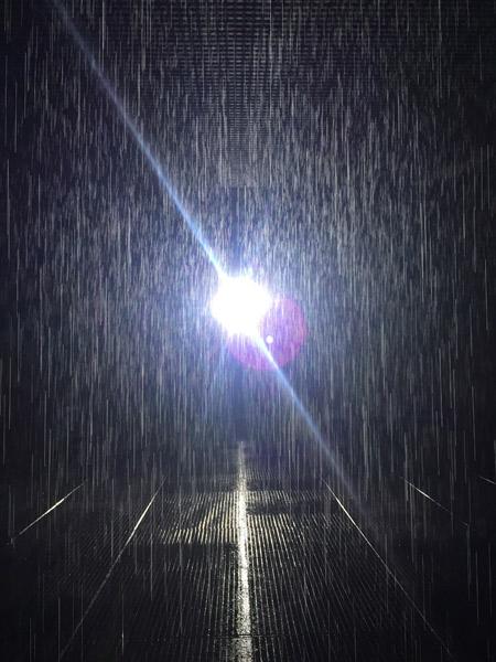 Rain-Room-drops