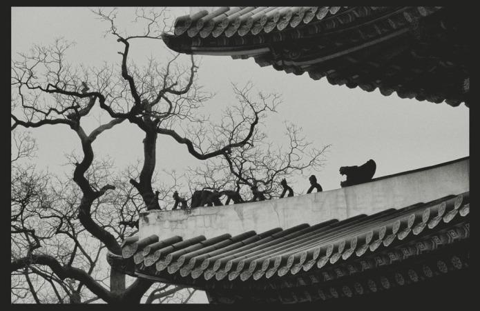 gyeongbok-japsang-bt
