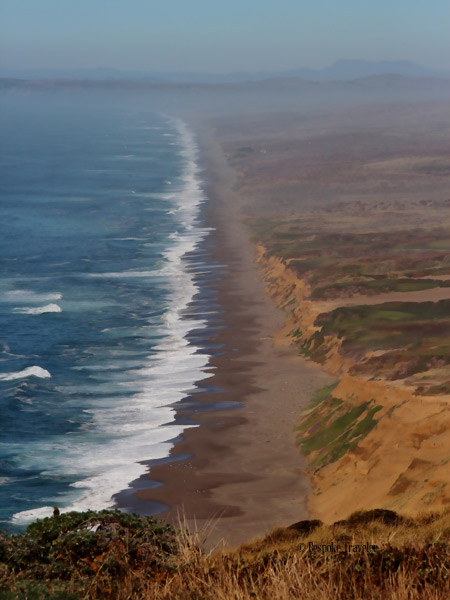 Pt-Reyes-beach-BT