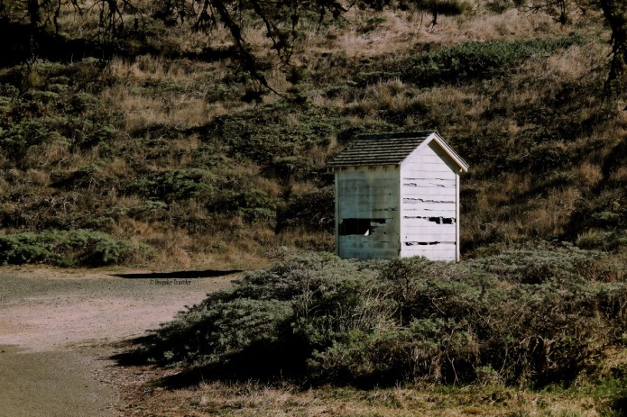 Pt-Reyes-shack-BT