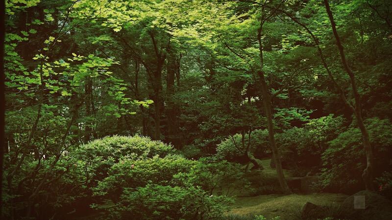 Portland Garden - BT